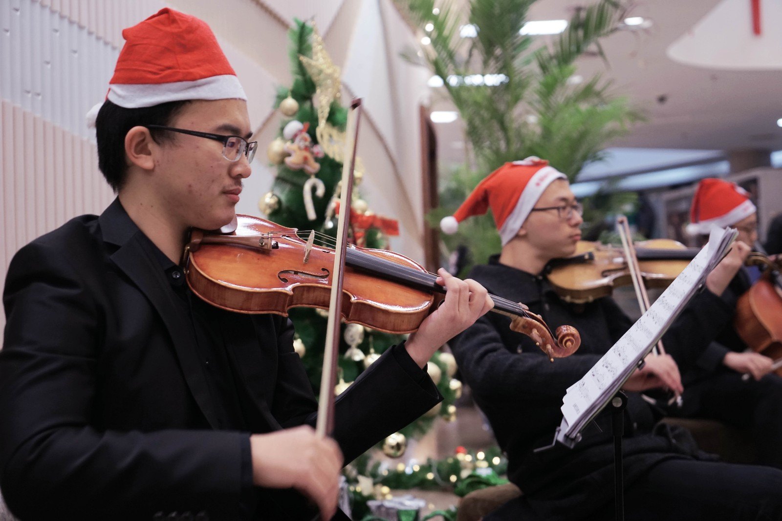 小提琴-1.jpg